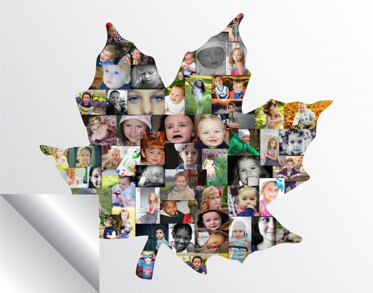 Maple Leaf Collage Printed Version
