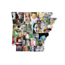Arkansas Photo Collage