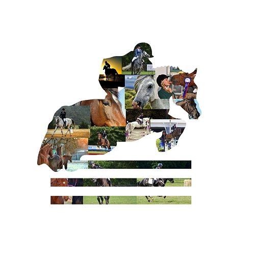 Equestrian Photo Collage