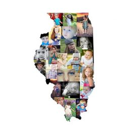 Illinois Photo Collage