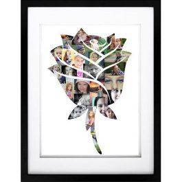 Rose Photo Collage