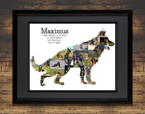 German Shepherd Collage with Black Matted Frame and Backdrop