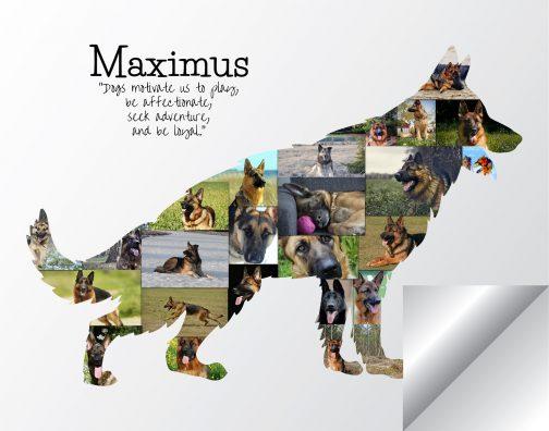 German Shepherd Collage Printed Version