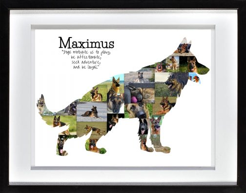 German Shepherd Collage with White Matted Frame