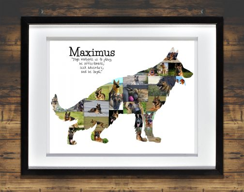 German Shepherd Collage with White Matted Frame and Backdrop