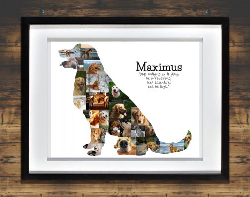 Golden Retriever Collage with White Matted Frame and Backdrop