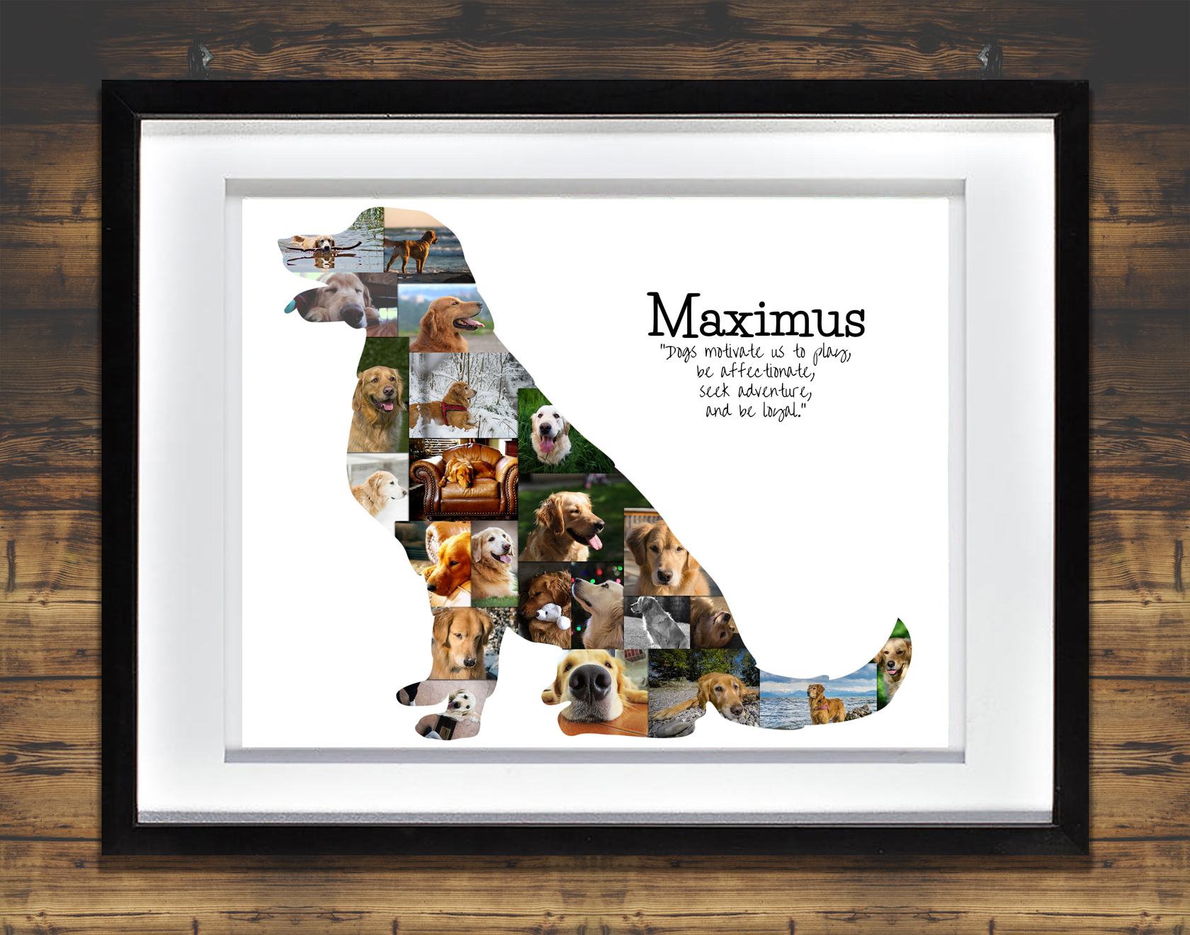 Golden Retriever Photo Collage: Premium, Hand-Crafted Collages ...