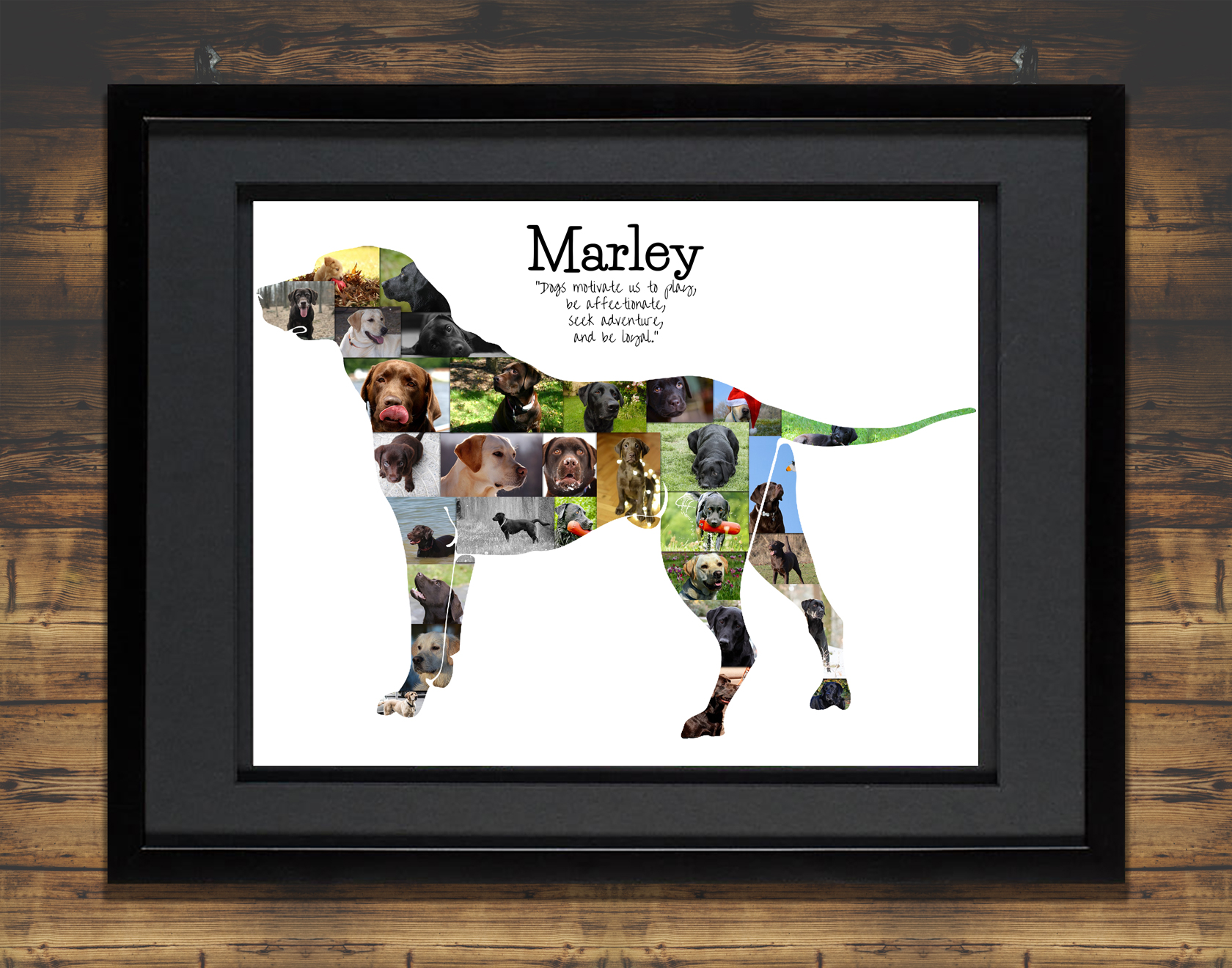 Labrador Dog Photo Collage with Black Matted Frame and Backdrop