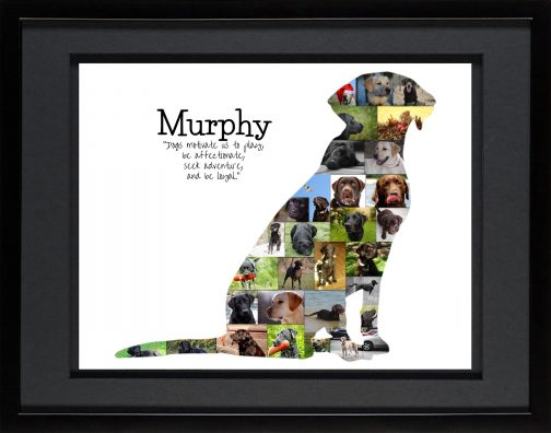 Labrador Dog Photo Collage with Black Matted Frame