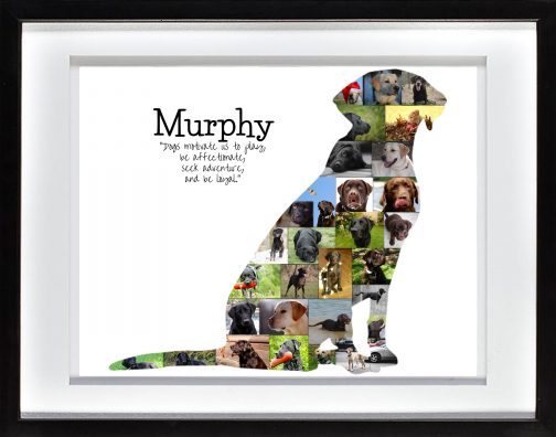 Labrador Dog Photo Collage with White Matted Frame
