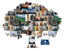 Family Tree Idea – Custom Photo Collage
